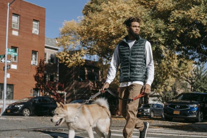 Hombre caminando con su perro en un día soleado